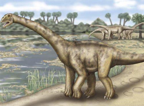 dinosaurio de Riodeva